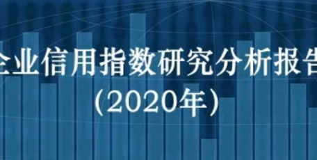 企业信用指数研究分析报告(2020年)