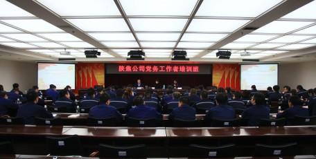 提升素质聚合力  党建领航促发展
