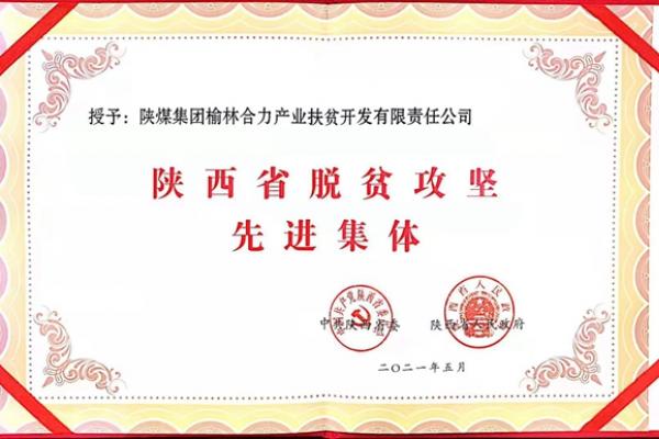 陕煤集团榆林合力公司荣获陕西省...